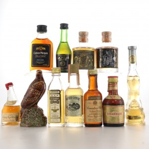 Brandy, Rum & Whisky Miniature Selection 11 x 5cl