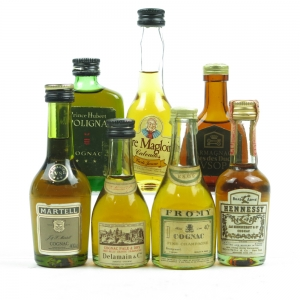 French Brandy Miniature Selection 7 x 5cl