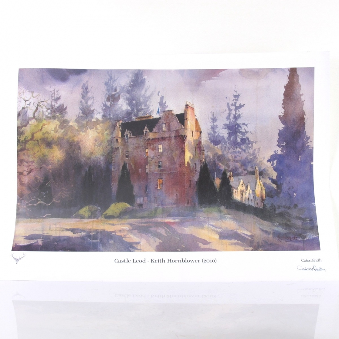 Dalmore 1995 Castle Leod / Including Print